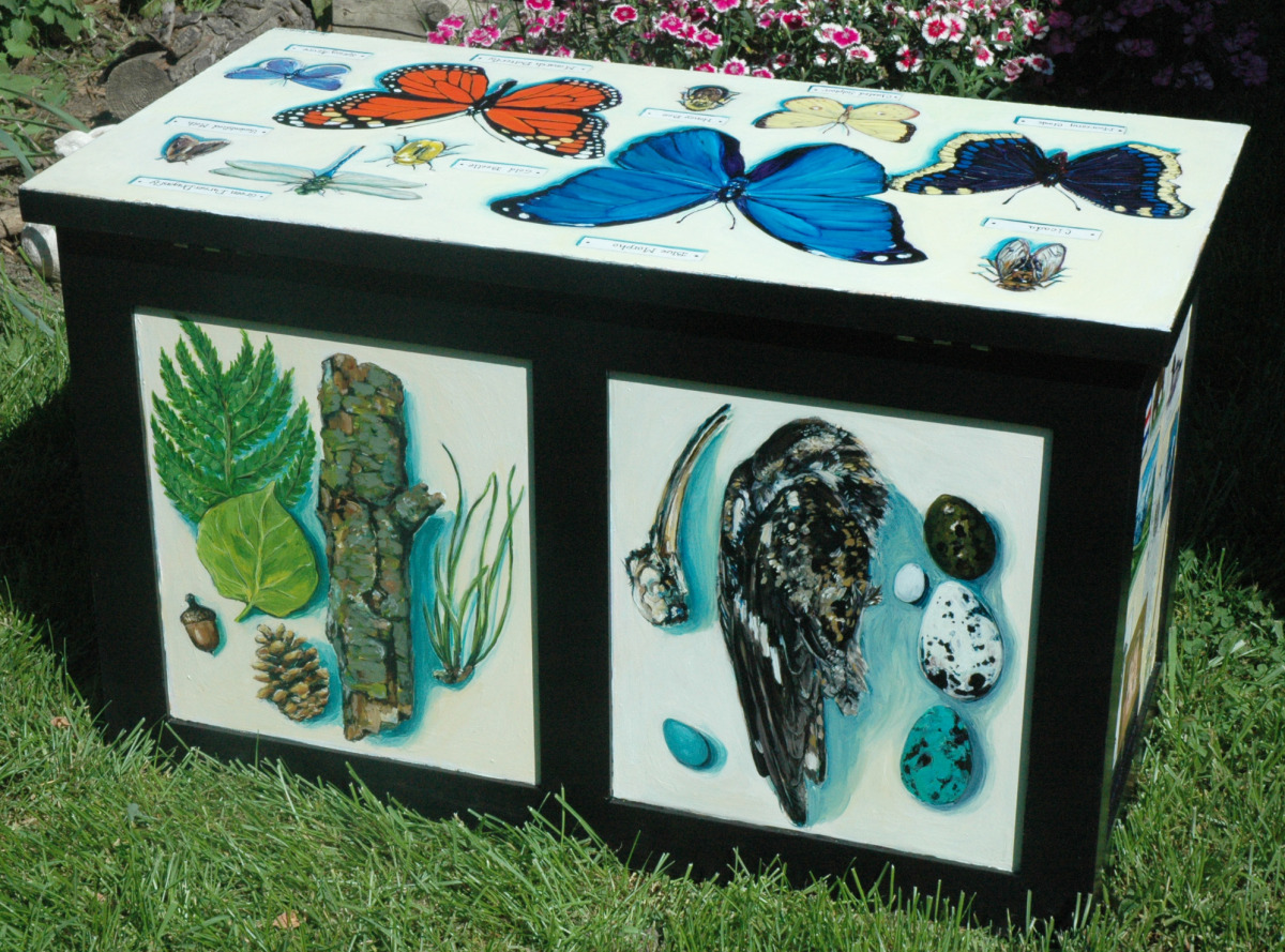 """Racine Public Art Project 2012: Trunks - """"The Naturalist Collection Box,"""" Back and Top (large view)"""