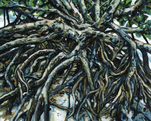 Root Strength  (Mangrove Trees)