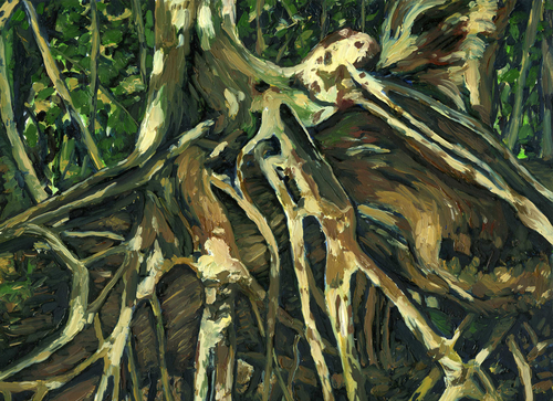 Strangler Fig Roots (large view)