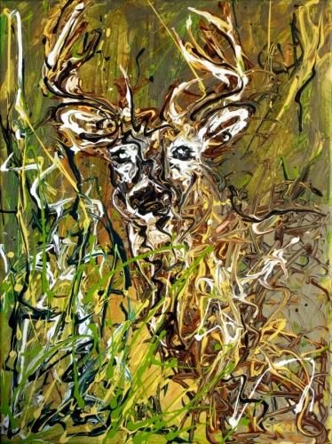 Whitetail Buck 1