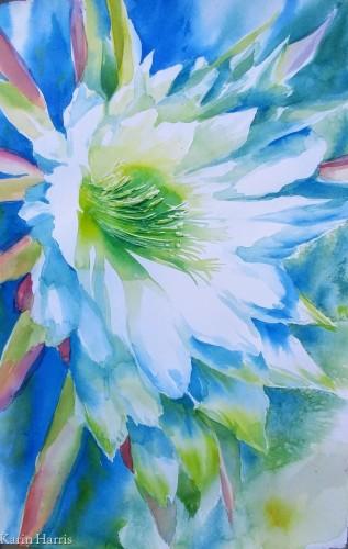Torch Cactus 21 by Karin Harris