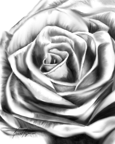 The Second Rose