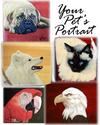 Your Pet's Portrait (thumbnail)