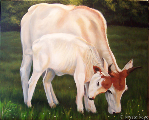 Donna's Zebu by Krysta Kaye