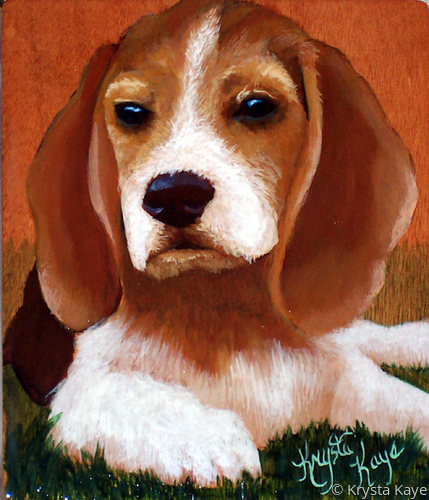 Beagle Pup (large view)