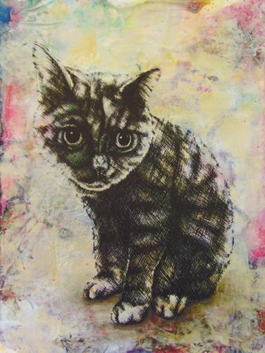 CAT by Katerina Husar Lazarova