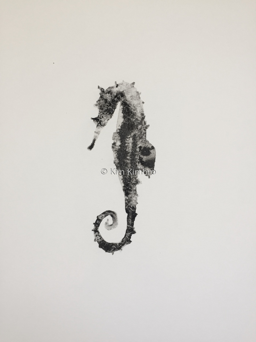 seahorse (large view)