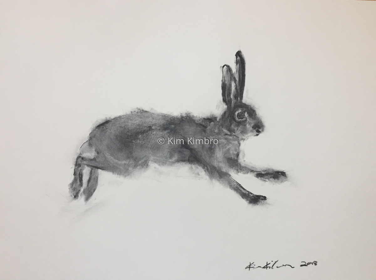 charcoal rabbit #2 (large view)