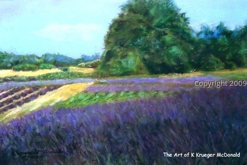 Sequim Lavender (large view)