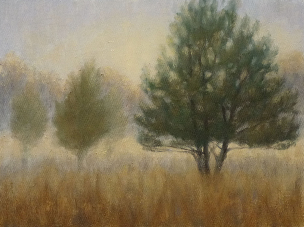 MIsted Field (large view)