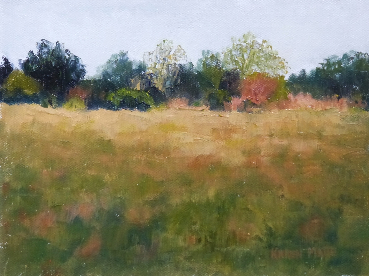 Spring Field (large view)