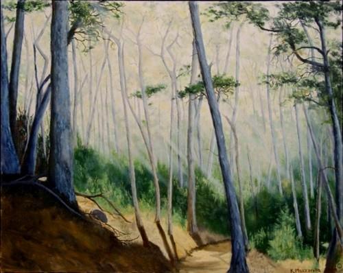 Pt. Lobos Path (large view)