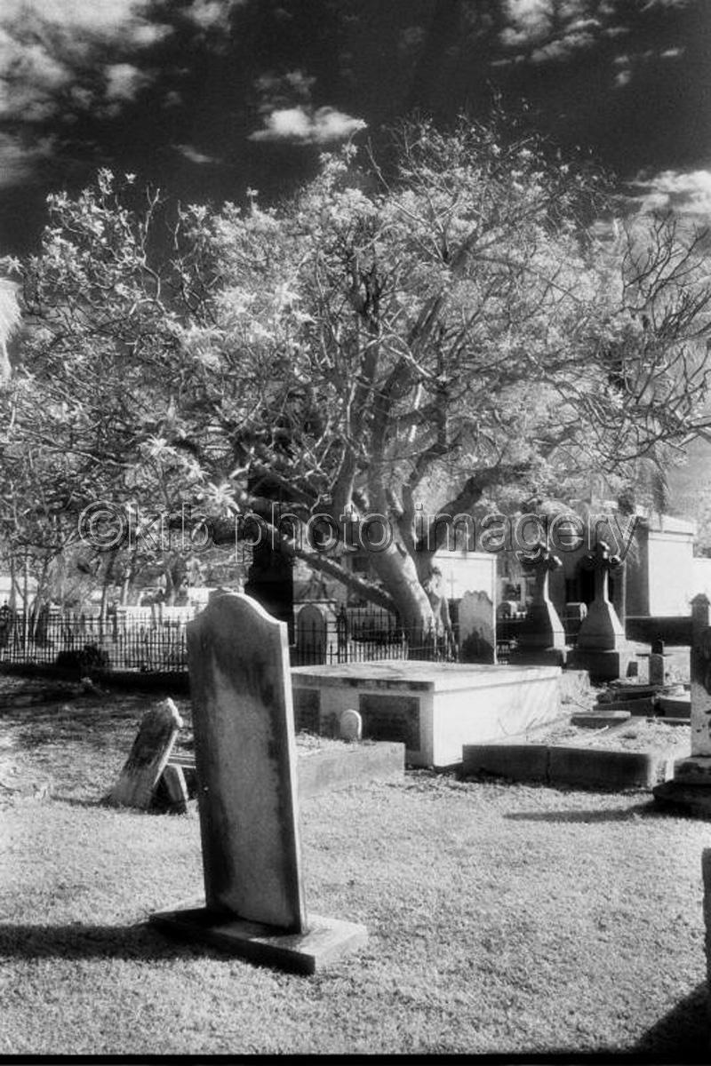 Key West Cemetary (large view)