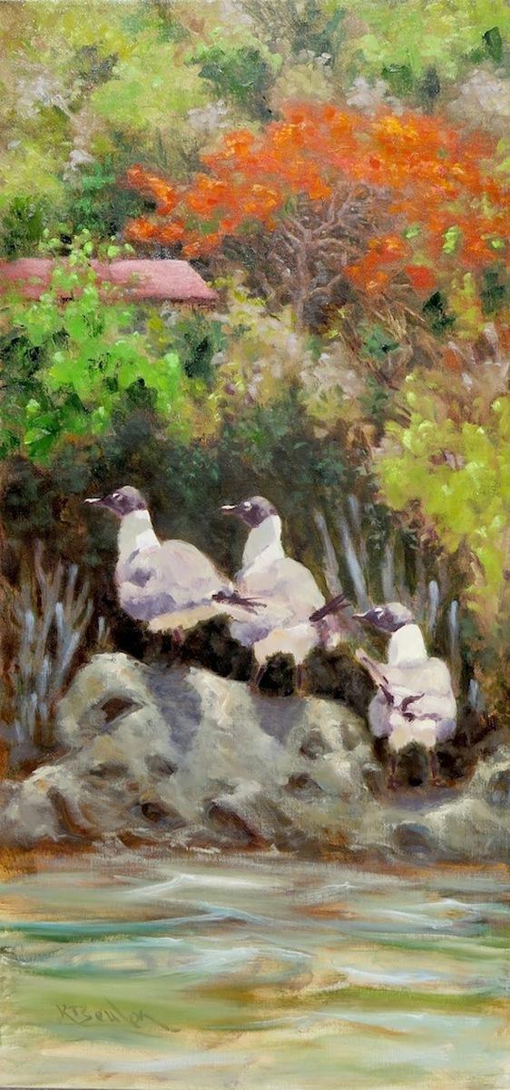 Vigilance - Laughing Gulls (large view)