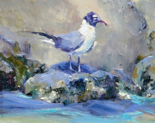 Gull In Blue