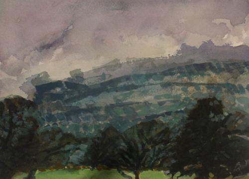 March rain- Mid Wales