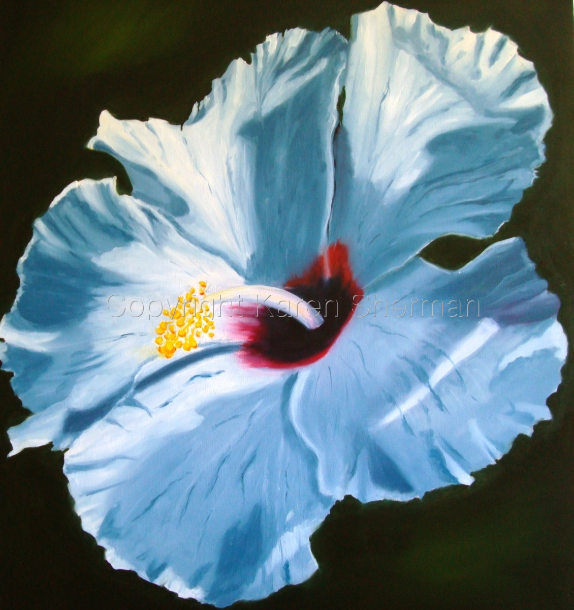 """White Hibiscus 3"" (large view)"