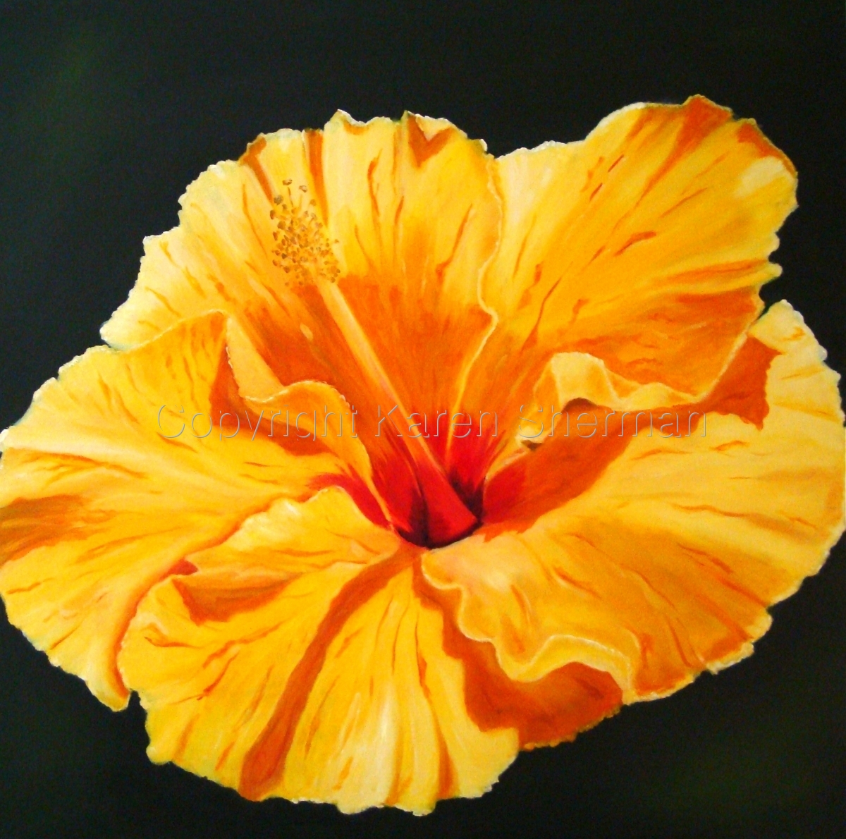 """Yellow Hibiscus 2"" (large view)"