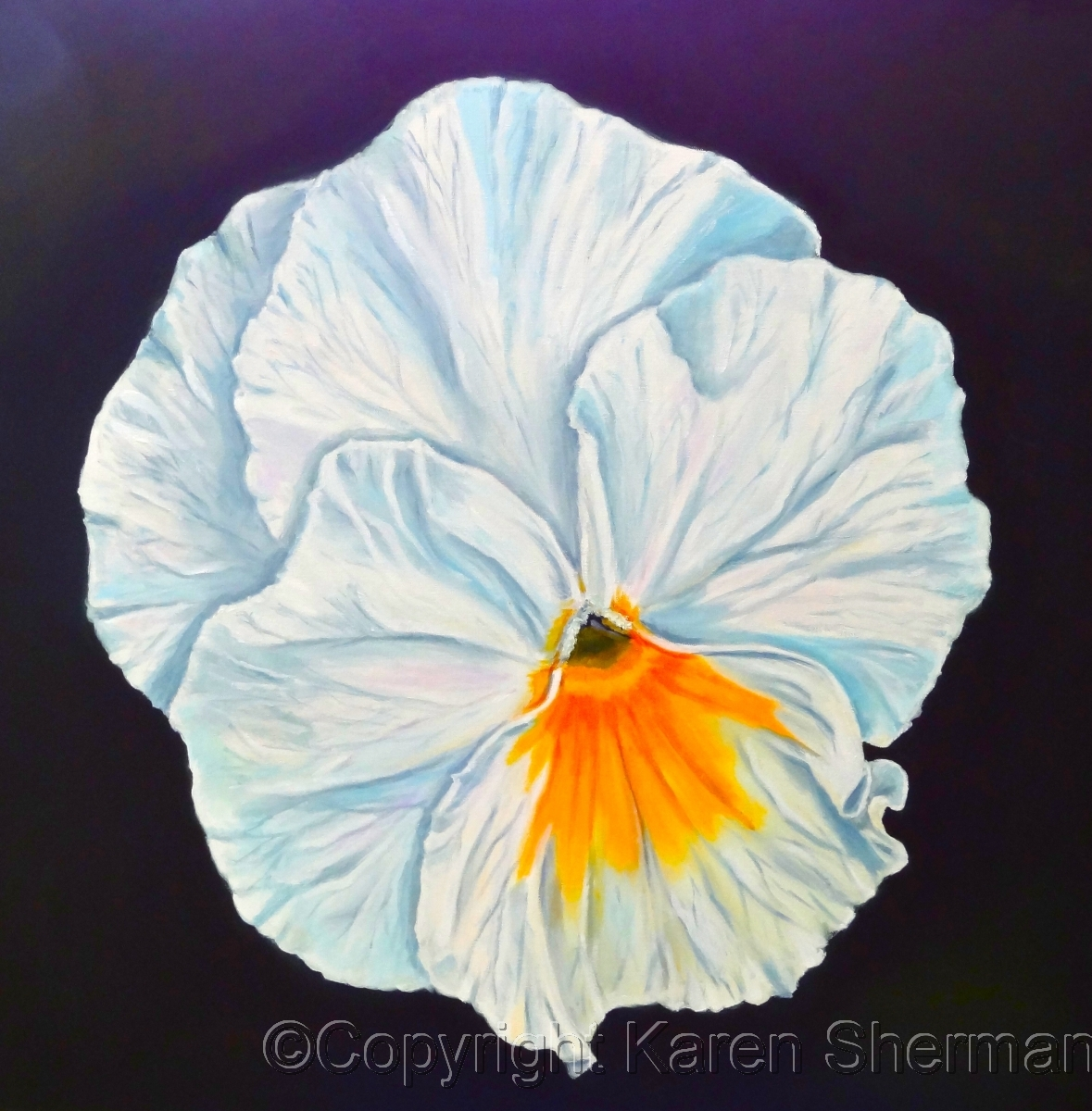 """Pansy"" (large view)"