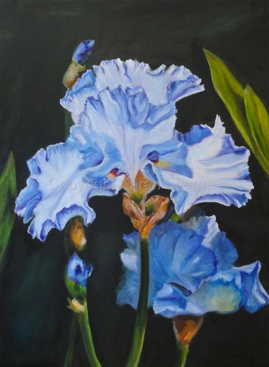 """""""Iris"""" (large view)"""