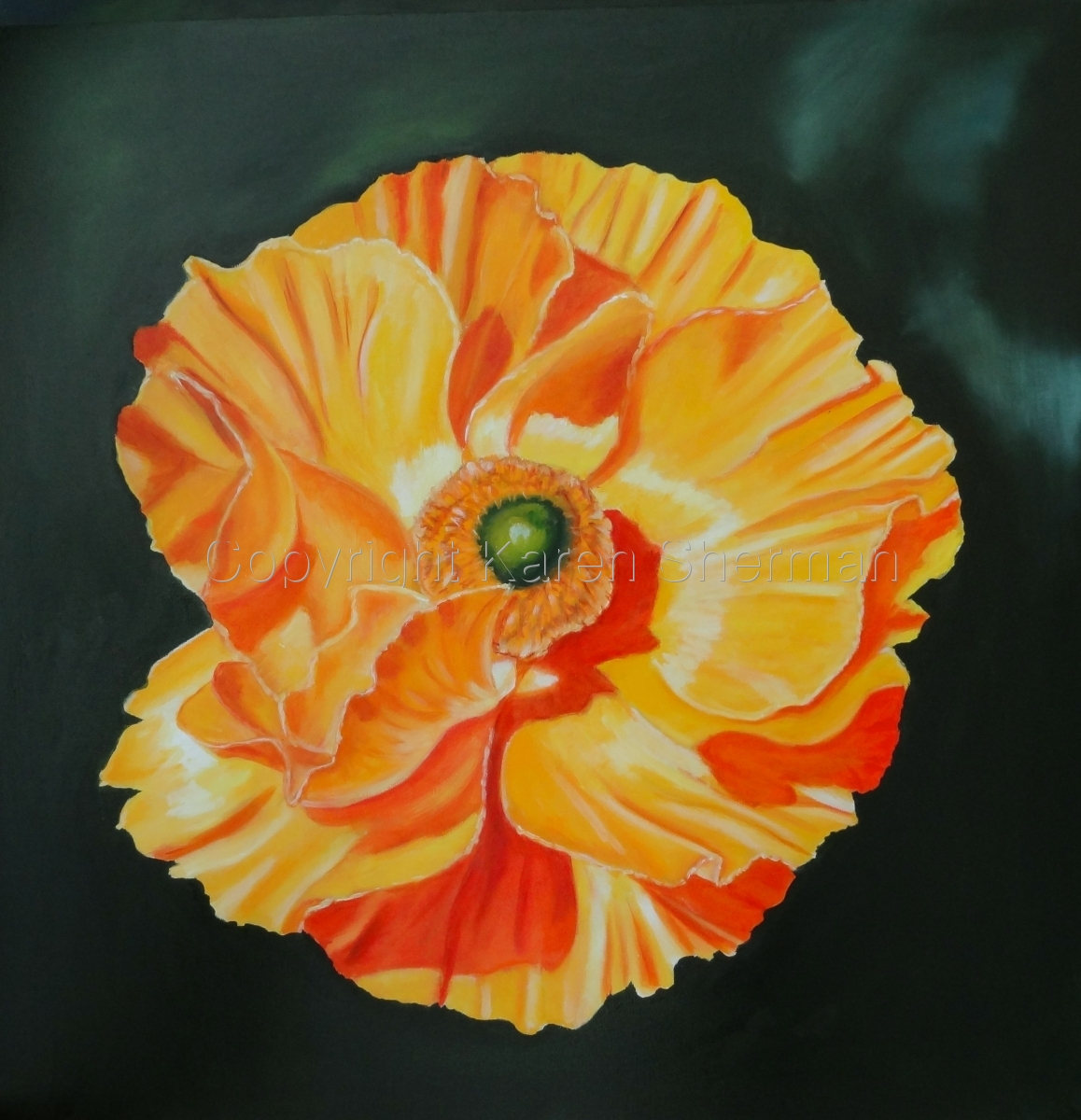 """Yellow Poppy"" (large view)"