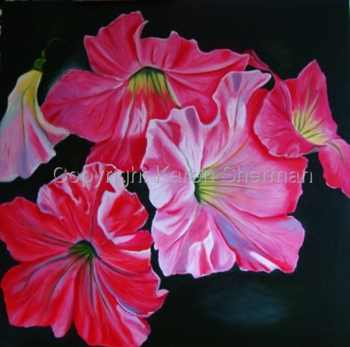 """Petunia Cluster 1"" (large view)"