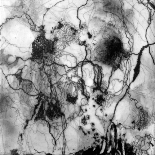 Social Cobwebs