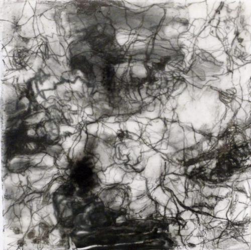 Labyrinthine Weaver