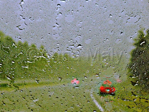 Road, rain