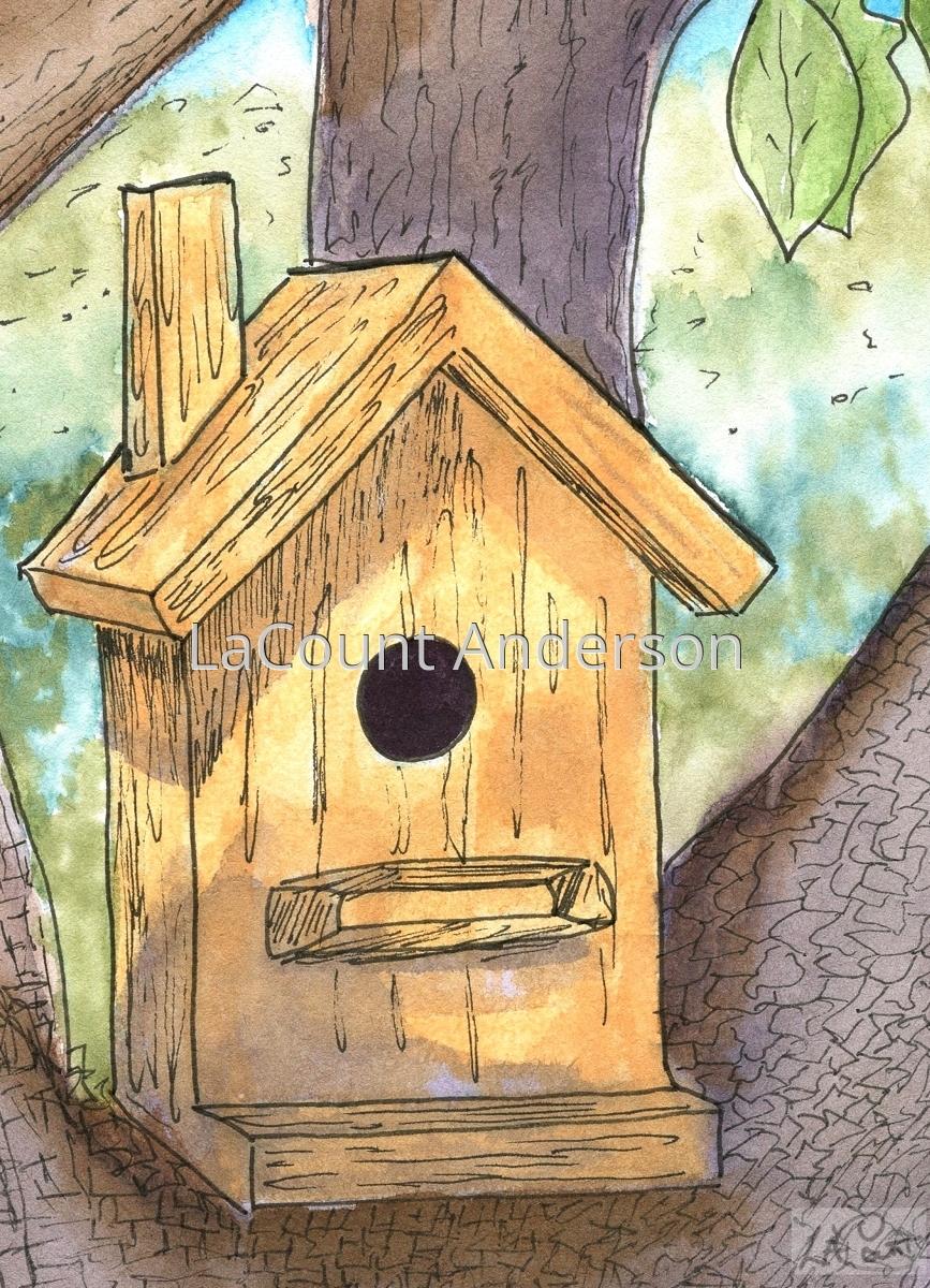 birdhouse (large view)