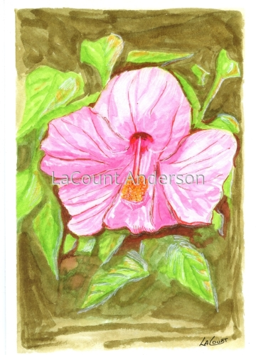 Hibiscus by LaCount Anderson