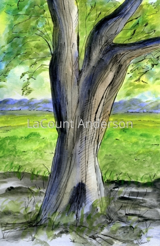 Old Tree by LaCount Anderson