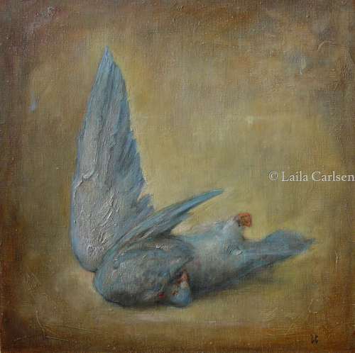 Blue Dove. by Laila Carlsen