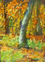 Fall Light, South Mountain, PA (thumbnail)