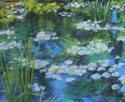 Water Lilies, Huntsville Botanical Garden (thumbnail)