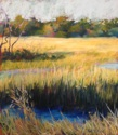 Fall Afternoon, St. Simons Island, GA (thumbnail)