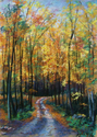 Fall Afternoon, South Mountain (thumbnail)