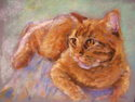 Jillian's Cat (thumbnail)