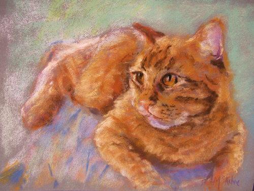 Jillian's Cat (large view)