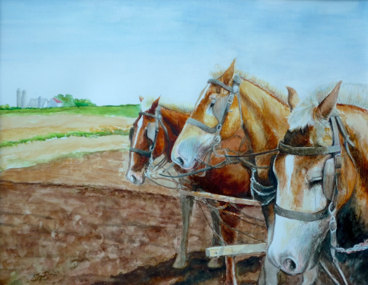 Watercolor painting of workhorses (large view)