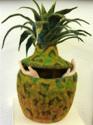Pineapple Lift-off (thumbnail)