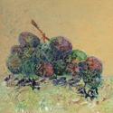 Grapes (thumbnail)