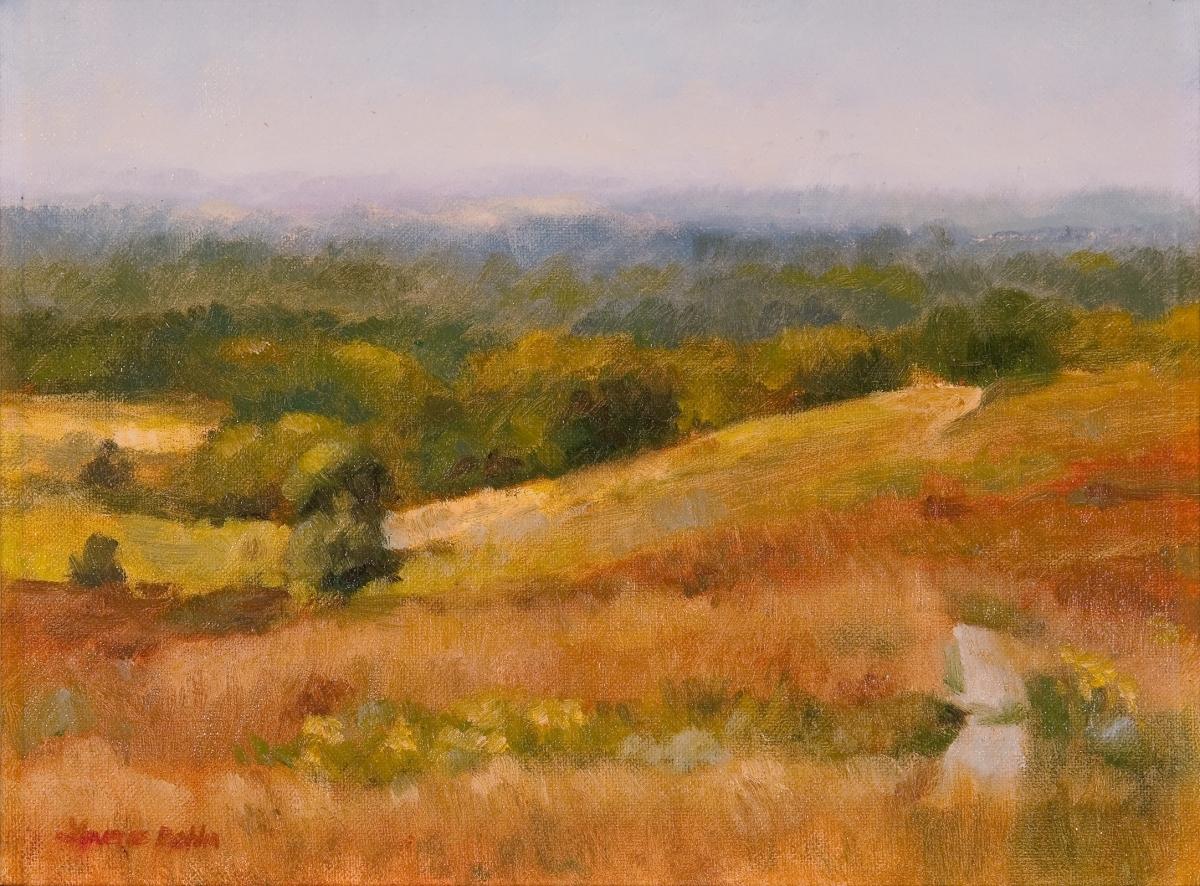 Byron Prairie (large view)