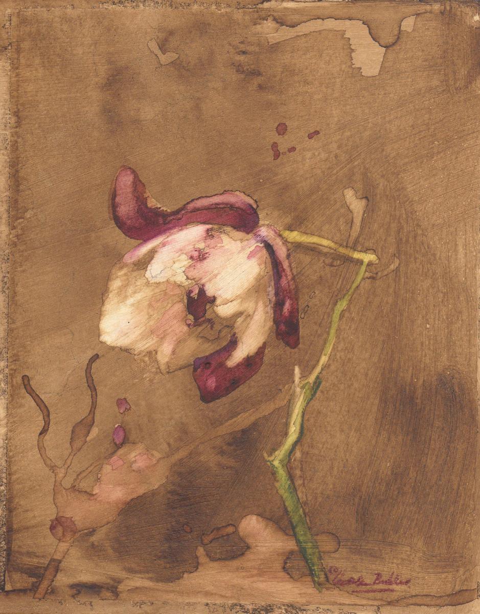 Fleur (large view)