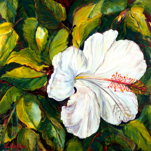 White Hibiscus II (large view)