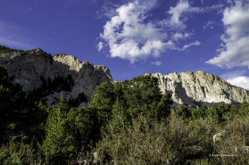 Chalk Cliffs #2