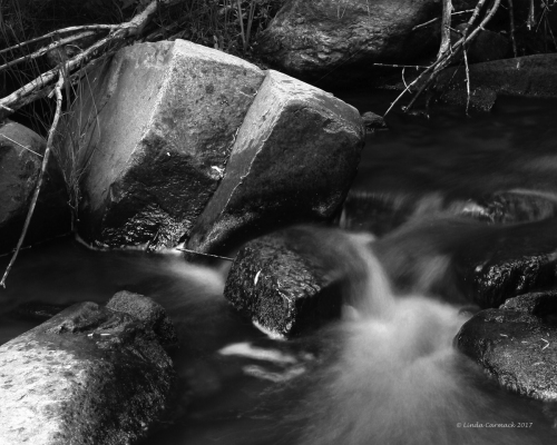 South Hardscrabble Creek B&W