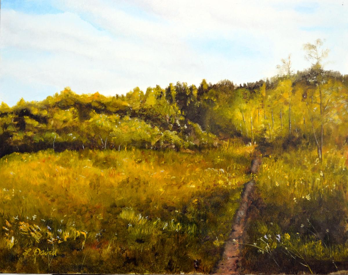 Adirondack Afternoon (large view)