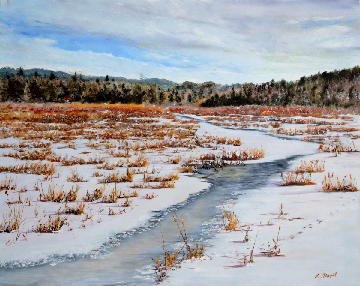 Alder Meadow Thaw (large view)
