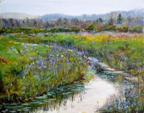 Alder Meadow Adirondacks